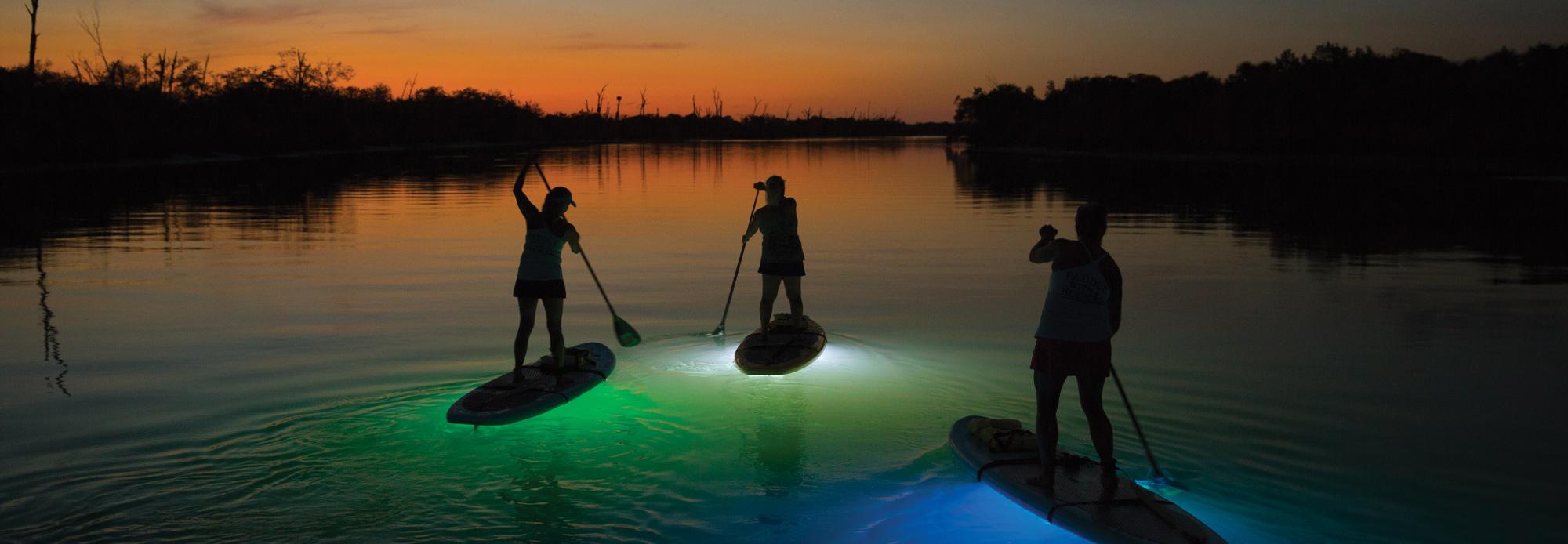 nighttime stand up paddleboard